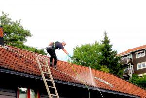 Fjerne mose fra tak. Foto