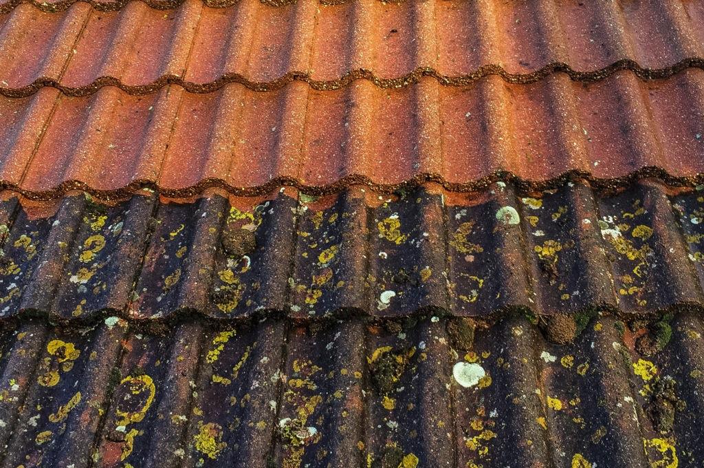 Før og etter takrens, mosefjerning og takvask. Foto